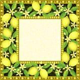 Frame with Lemons Stock Image