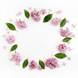 Frame with lilac flowers and leaves on white background. flat lay, overhead view royalty free stock photos