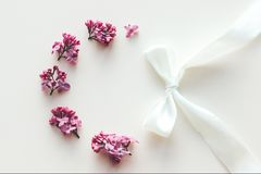 Frame of lilac flowers on white background. stock photography