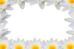 Frame lotus Stock Images