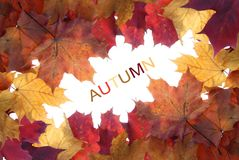 Frame made of autumn leaves Royalty Free Stock Photos