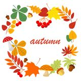 Fallen leaves frame design with orange, yellow, green and red leaves and twigs of trees with text Autumn on background Stock Photography