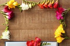 Frame made of beautiful freesia flowers royalty free stock photo
