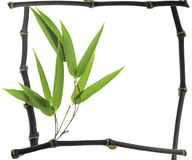 Frame made of black bamboo Stock Image