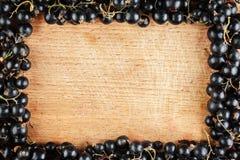 Frame made of black currant Stock Photos