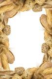 Frame made of bread Stock Photos