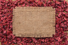 Frame made of burlap on dried cranberries Stock Images