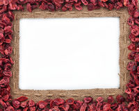 Frame made of burlap with dried cranberries Stock Images