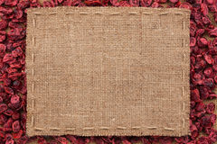 Frame made of burlap with the line lies on cranberry Royalty Free Stock Photos