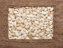 Frame made of burlap with the line lies on  pumpkin  seeds Stock Images