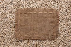 Frame made of burlap with the line lies on  sunflower seeds Royalty Free Stock Images