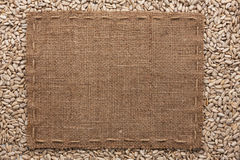 Frame made of burlap with the line lies on  sunflower seeds Royalty Free Stock Image