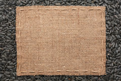 Frame made of burlap with the line lies on  sunflower seeds Stock Image