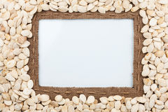 Frame made of burlap with the line and pumpkin seeds lies white Royalty Free Stock Photo
