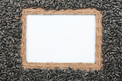 Frame made of burlap with the line and sunflower seeds lies whit Stock Photo