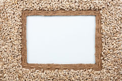 Frame made of burlap with the line and sunflower seeds lies whit Royalty Free Stock Images