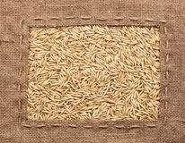 Frame made of burlap with oats Stock Photography