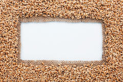 Frame made of burlap with wheat Royalty Free Stock Photo