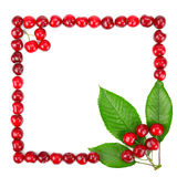Frame made of cherries and green leaves Stock Image
