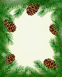 Frame made of christmas tree branches with pine co Royalty Free Stock Image