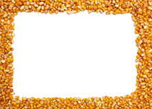 Frame made of corn seeds Royalty Free Stock Images