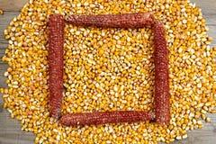 Frame made of corn seeds Royalty Free Stock Photos