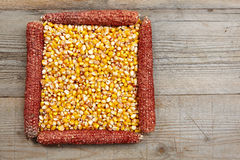 Frame made of  corn seeds Royalty Free Stock Photo