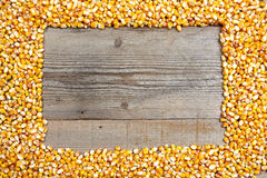 Frame made of  corn seeds Stock Photography