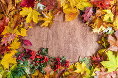 Frame made of fall leaves on wood. Autumn background stock photo