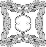 Frame made of four twisted snakes Royalty Free Stock Photos