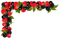 Frame made of fresh juicy berries. Stock Photo