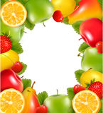Frame made of fresh juicy fruit. Stock Image