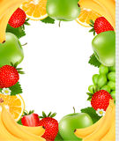 Frame made of fresh juicy fruit. Royalty Free Stock Photo
