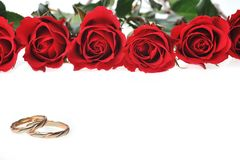 Frame Made From Red Roses Stock Photos