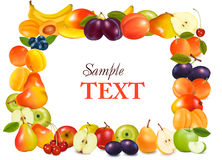 Frame made from fruits. Stock Photo