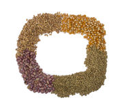 Frame made from grains and seeds. Wheat, lentils, popcorn and beans used Royalty Free Stock Photo