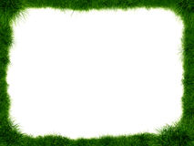 Frame made of grass Royalty Free Stock Images