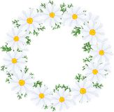 The wreath of flowers Stock Image