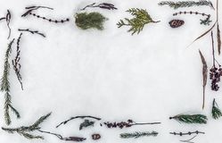 Frame made of natural cones, sprigs of fir-tree, pine, trees, herbs and plants on the snow stock image