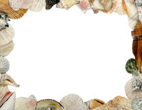 Frame Made Of Shells Royalty Free Stock Image
