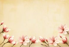 Frame made out of magnolia flowers. Vector Stock Photography