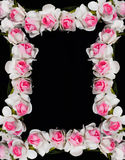 Frame made of paper roses Royalty Free Stock Images