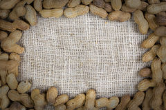 Frame made of peanuts Royalty Free Stock Photo