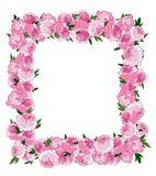 Frame made from flowers Royalty Free Stock Photos