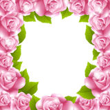 Frame made of pink roses with text frame Stock Photo
