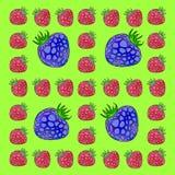 Frame made of raspberries and blackberries. Large blackberries in a small frame of raspberry Stock Image