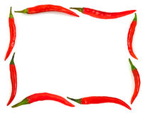Frame made of red hot chili pepper Royalty Free Stock Image