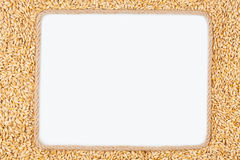 Frame made of rope with barley lying on a white background Stock Images