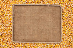 Frame made of rope with corn grains on sackcloth Stock Images
