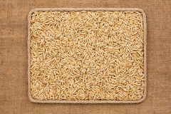 Frame made of rope with  oats  grains on sackcloth Royalty Free Stock Image